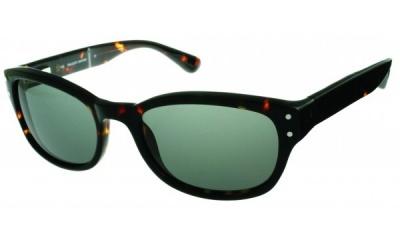 Hackett Sunglasses HEB 051 10P Tortoise