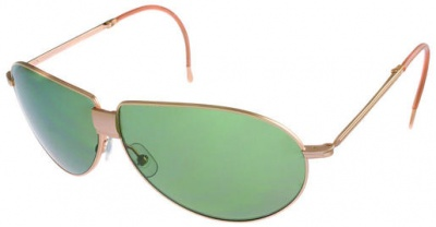 Hackett Sunglasses HSB 810 41P Gold